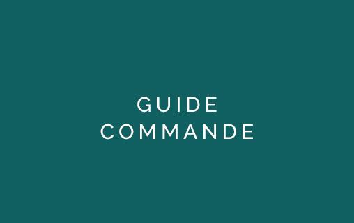 Guide commande Promesse Graphique